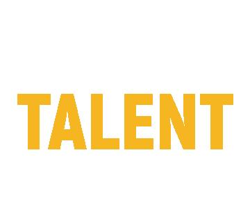 Talent Hunter | IT & Telecom recruitment Logo